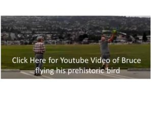 BruceBird